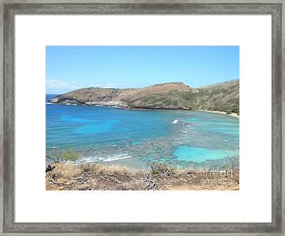 Tropical Bay Framed Print by Silvie Kendall
