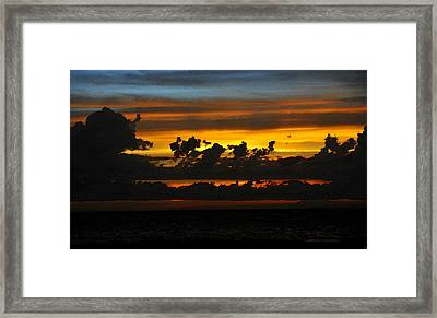 Tropical Light Framed Print by David Lee Thompson