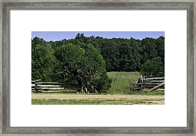 Trumpet Vine And Fence At Appomattox Courthouse Virginia Framed Print by Teresa Mucha