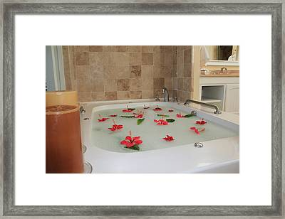 Tub Of Hibiscus Framed Print by Shane Bechler