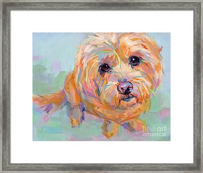 Tucker Framed Print by Kimberly Santini
