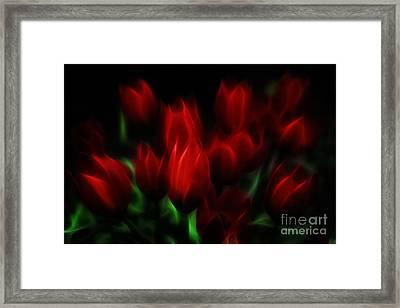 Tulip Essence Framed Print by Jutta Maria Pusl