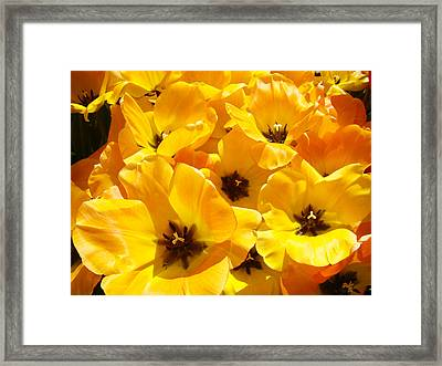 Tulips Art Prints Yellow Tulip Flowers Floral Framed Print by Baslee Troutman