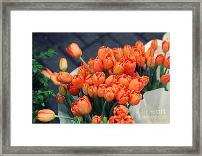 Tulips Framed Print by Leslie Leda