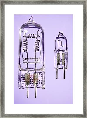 Tungsten Halogen Lamps Framed Print by Sheila Terry