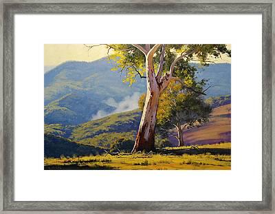 Turon Gum Tree Framed Print by Graham Gercken