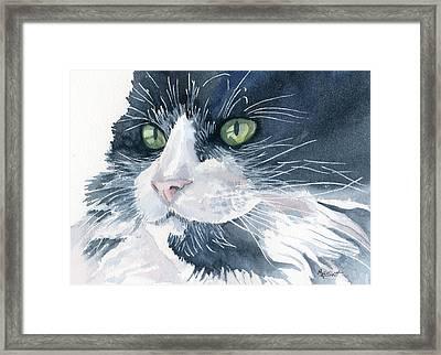 Tuxedo Framed Print by Marsha Elliott