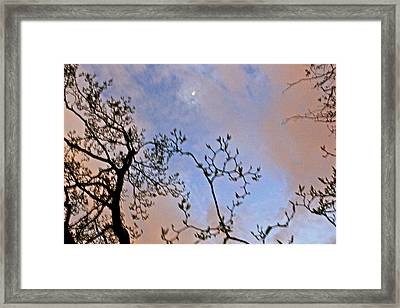 Twilight Framed Print by Felix Zapata