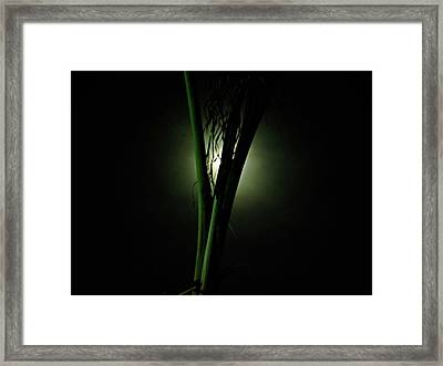 Twilight Framed Print by Peter P G