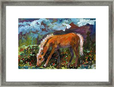 Twilight Pony In Protest Of H.r. 2112 Painting Framed Print by Ginette Callaway
