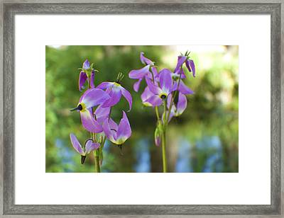 Twin Sisters Framed Print by M Valeriano