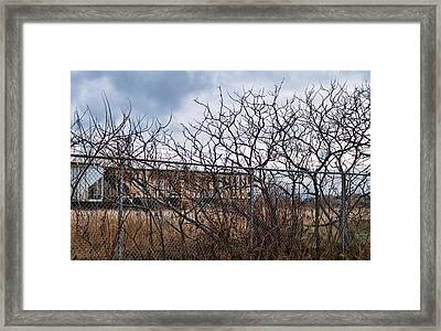 Twisted-2 Framed Print by Peter Chilelli