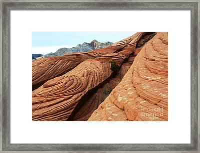 Twisted Landscape Framed Print by Bob Christopher