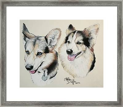 Two Corgies Framed Print by Stephen Duffin