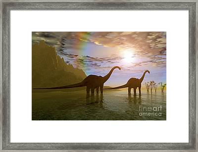 Two Diplodocus Dinosaurs Wade Framed Print by Corey Ford