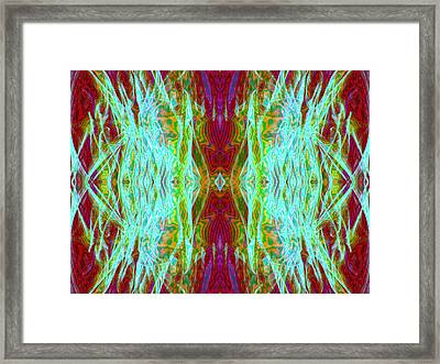Two Fish Framed Print by Danny Lally