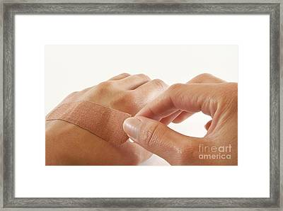 Two Hands With Bandage Framed Print by Blink Images