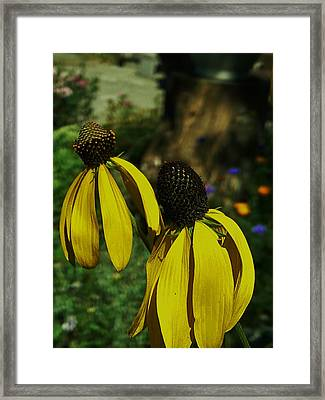 Two Of A Kind Framed Print by Barbara St Jean