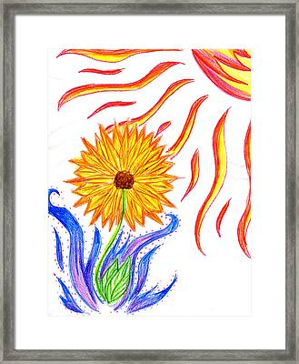 Two Suns Framed Print by Tessa Hunt-Woodland