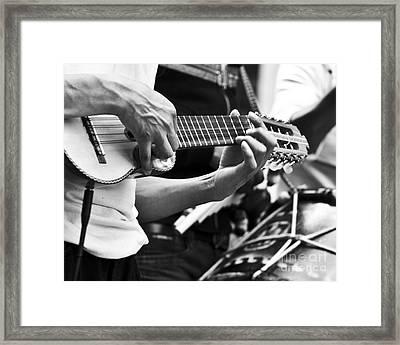 Ukelele Riff Framed Print by L E Jimenez