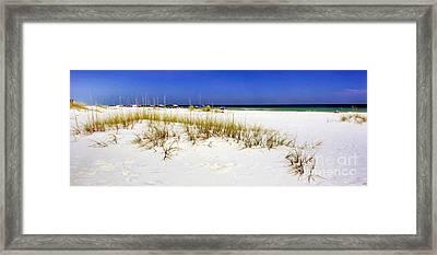 Umbrellas On The Beach Framed Print by Judi Bagwell