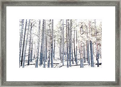 Under Fire Framed Print by Denise Romaine Photography