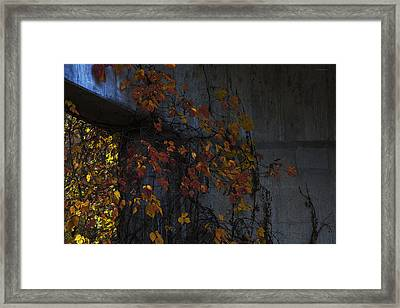 Under The Overpass Framed Print by Ron Jones