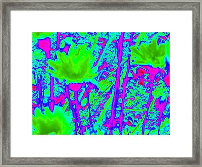 Unreal Chartreuse Framed Print by Claire Plowman