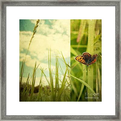 Unveil Framed Print by Violet Gray
