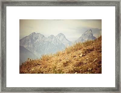 Uphill Climb Framed Print by Betsy Barron