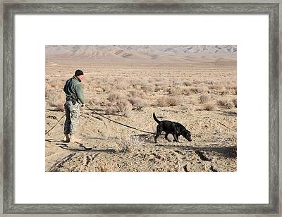 Us Soldier Works With Bear A Military Framed Print by Everett