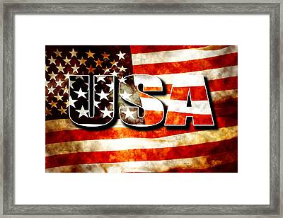 Usa Old Glory Flag Framed Print by Phill Petrovic
