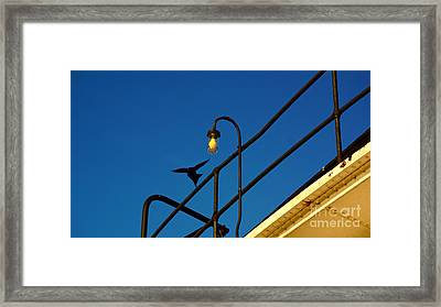 Valley Camp- 1555 Framed Print by Chuck Smith