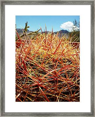 Valley Of Fire Framed Print by Lindsey Lacombe