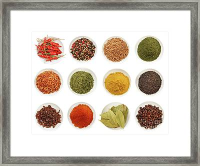 Variety Of Different Spices IIn Bowls  Framed Print by Sandra Cunningham