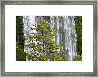 Vencedores Waterfall Framed Print by Ricardo Cardenas
