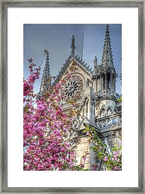 Vibrant Cathedral Framed Print by Jennifer Ancker