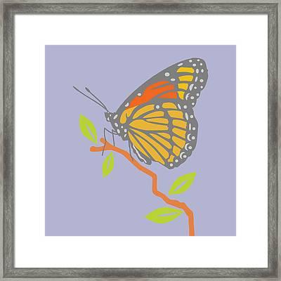 Viceroy Butterfly Framed Print by Mary Ogle