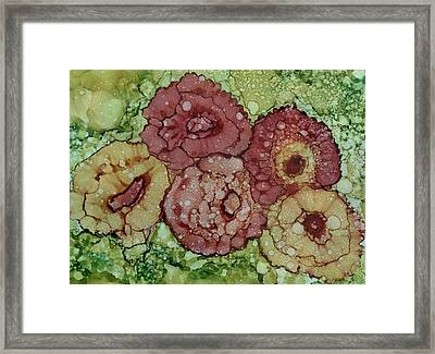 Victorian Roses Framed Print by Christine Crawford