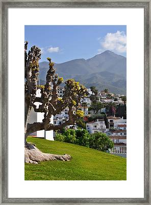 View From The Parador Nerja Framed Print by Mary Machare