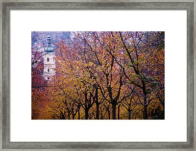 View Of Prague From Mala Strana Park Framed Print by Axiom Photographic