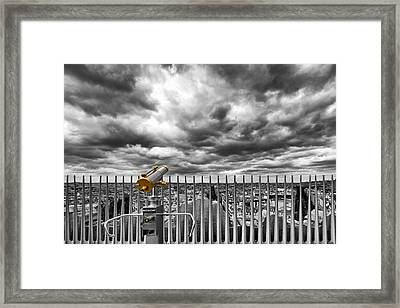 View Over The Roofs Of Paris Framed Print by Melanie Viola