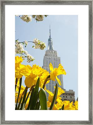 Views Of The Empire State Building And Framed Print by Axiom Photographic