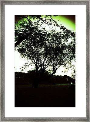 Vineta Framed Print by Lorenzo Muriedas
