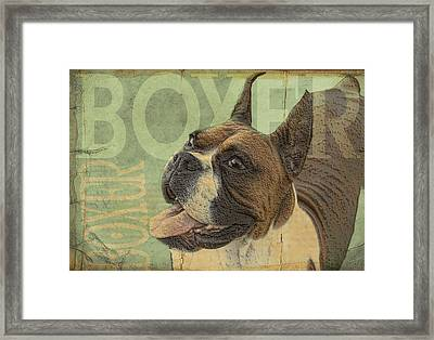 Vintage Boxer Dog Framed Print by Wendy Presseisen