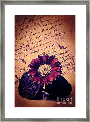 Vintage Passion Letters Framed Print by Angela Doelling AD DESIGN Photo and PhotoArt