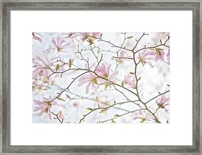 Vintage Spring Framed Print by Jacky Parker