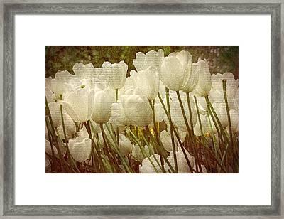 Vintage White Tulips Framed Print by Georgiana Romanovna