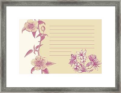 Violet Floral Card Framed Print by Dana Vogel