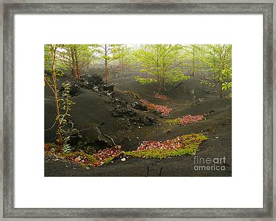 Volcanic Scenery Framed Print by Bernard MICHEL